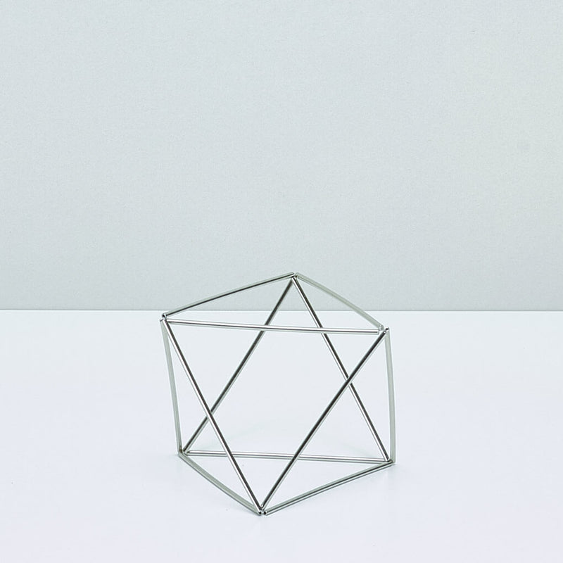 Table Cube Silver Large + Luftpflanze Xerographica