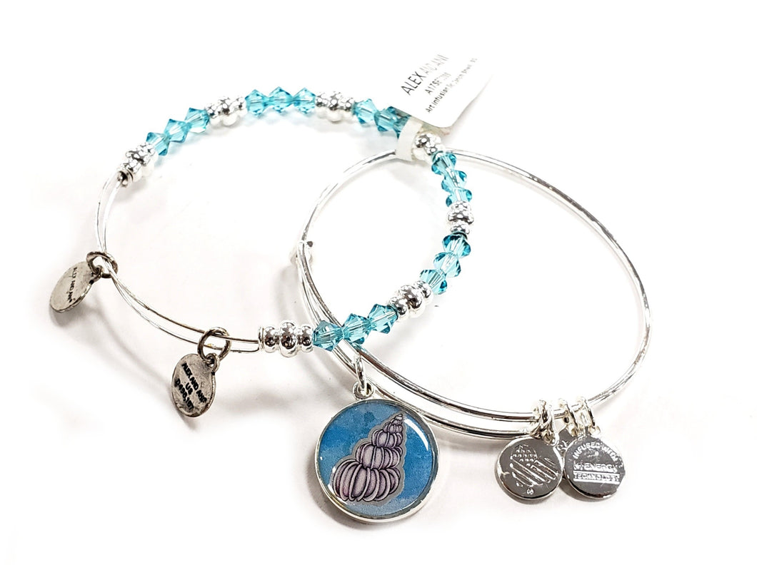 Alex and Ani Charm Bracelet Set