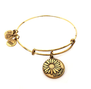Alex and Ani Charm Bracelet