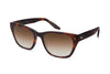 Barton Perreira Beatrix Sunglasses Tortoise Brown