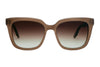 Barton Perreira Bolsha Sunglasses Brown