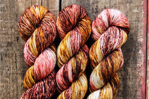 Cosy Posy Fancy Fingering Multicolor Yarn