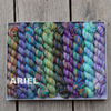 Koigu Pencil Box Collection kit with fingering yarn spun from 100% Merino Wool in Canada