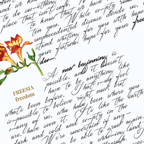 "alt=""project Shelter In Hope letter with cursive script and botanical illustration"""