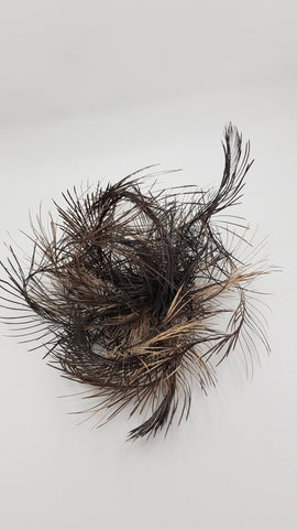 Emu tail Fascinator
