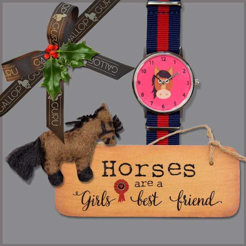 Festive 'Horses Are A Girl's Best Friend' Gift Box