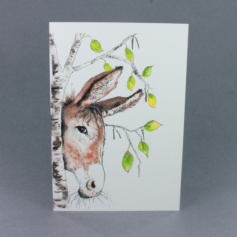 Greetings Card Selection Box by Cath Ward
