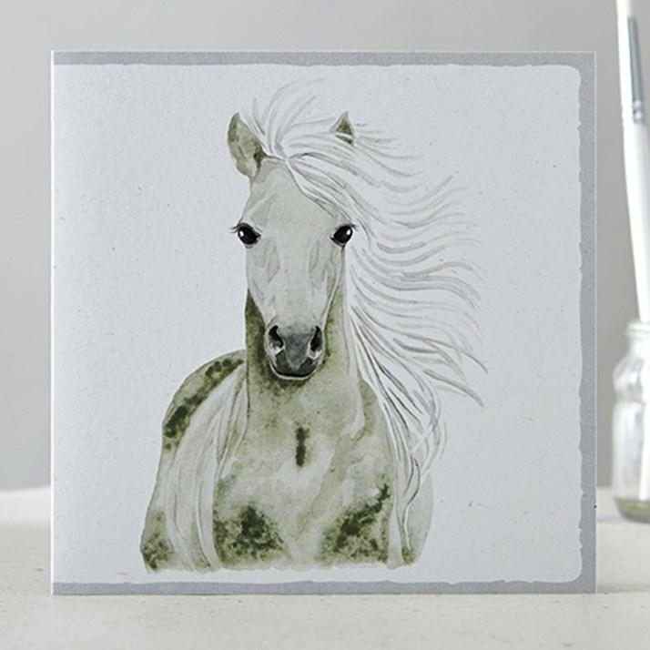Set of 5 Horse Cards