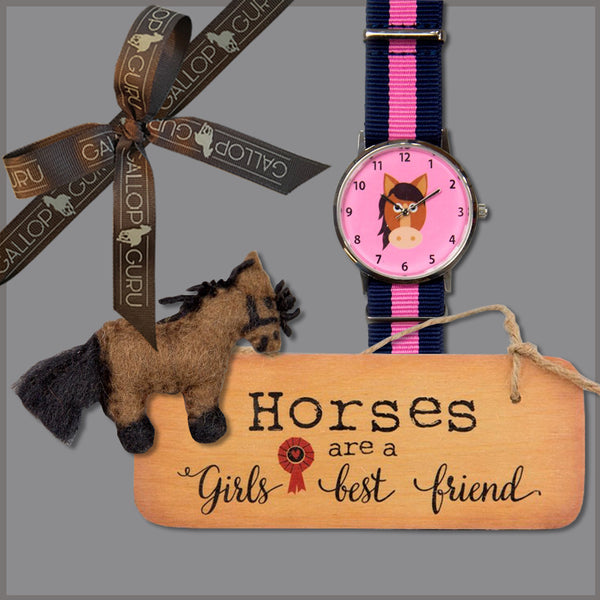 Gift box with wooden hanging sign, pink pony faced watch and brown felt pony brooch