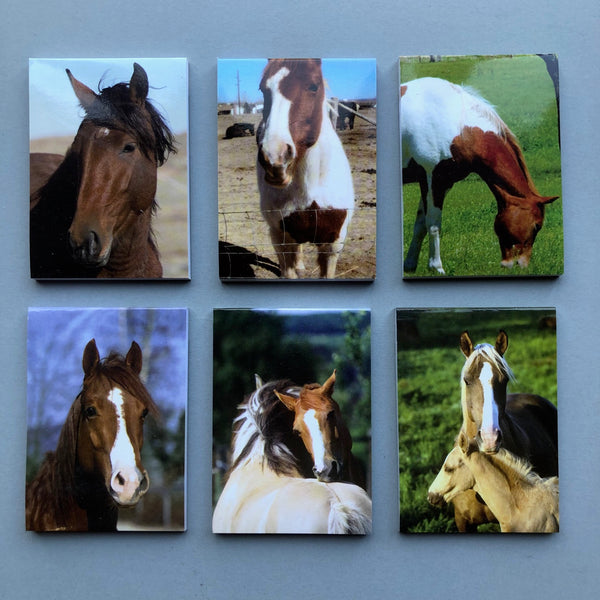 Pony Picture Note Pad