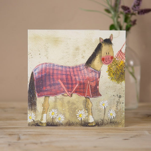 'New Coat' Horse Greeting Card