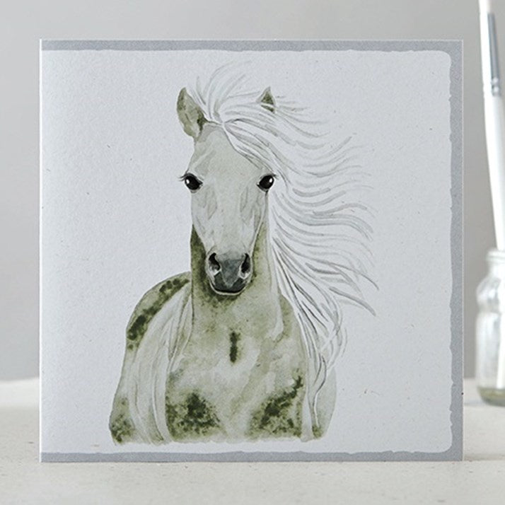 Gorgeous Grey Horse Greeting Card