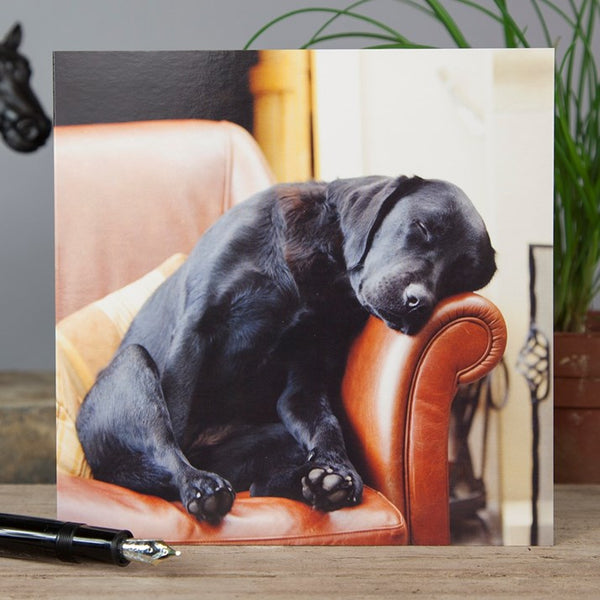 Sleeping Labrador Greeting Card