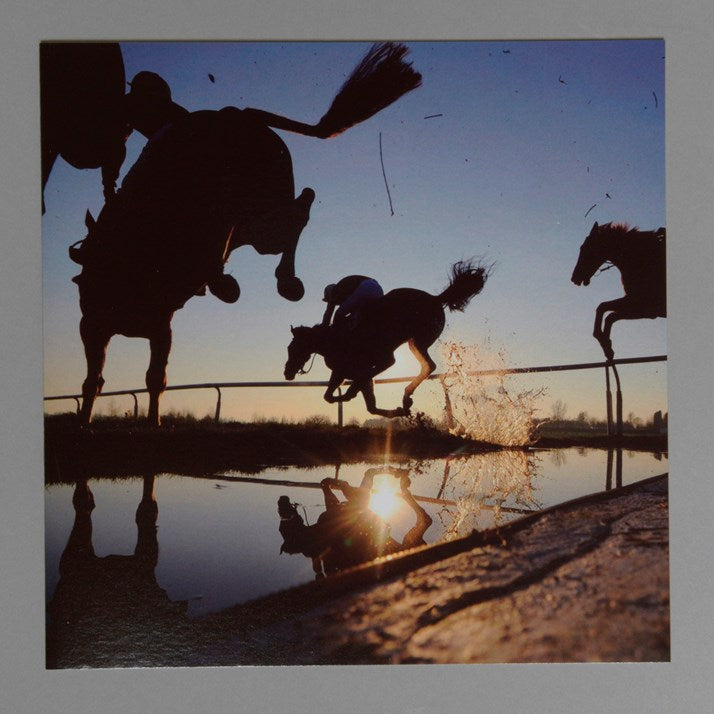 Horses Jumping Greeting Card