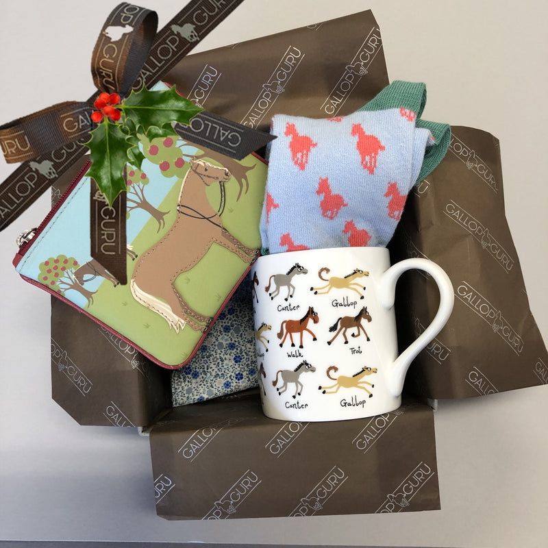 Festive 'Potty About Ponies' Gift Box