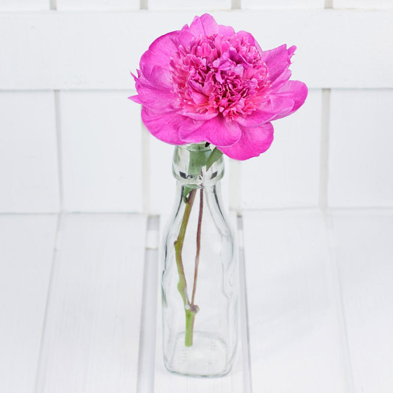 Alex Fleming Hot Pink Dutch Peony
