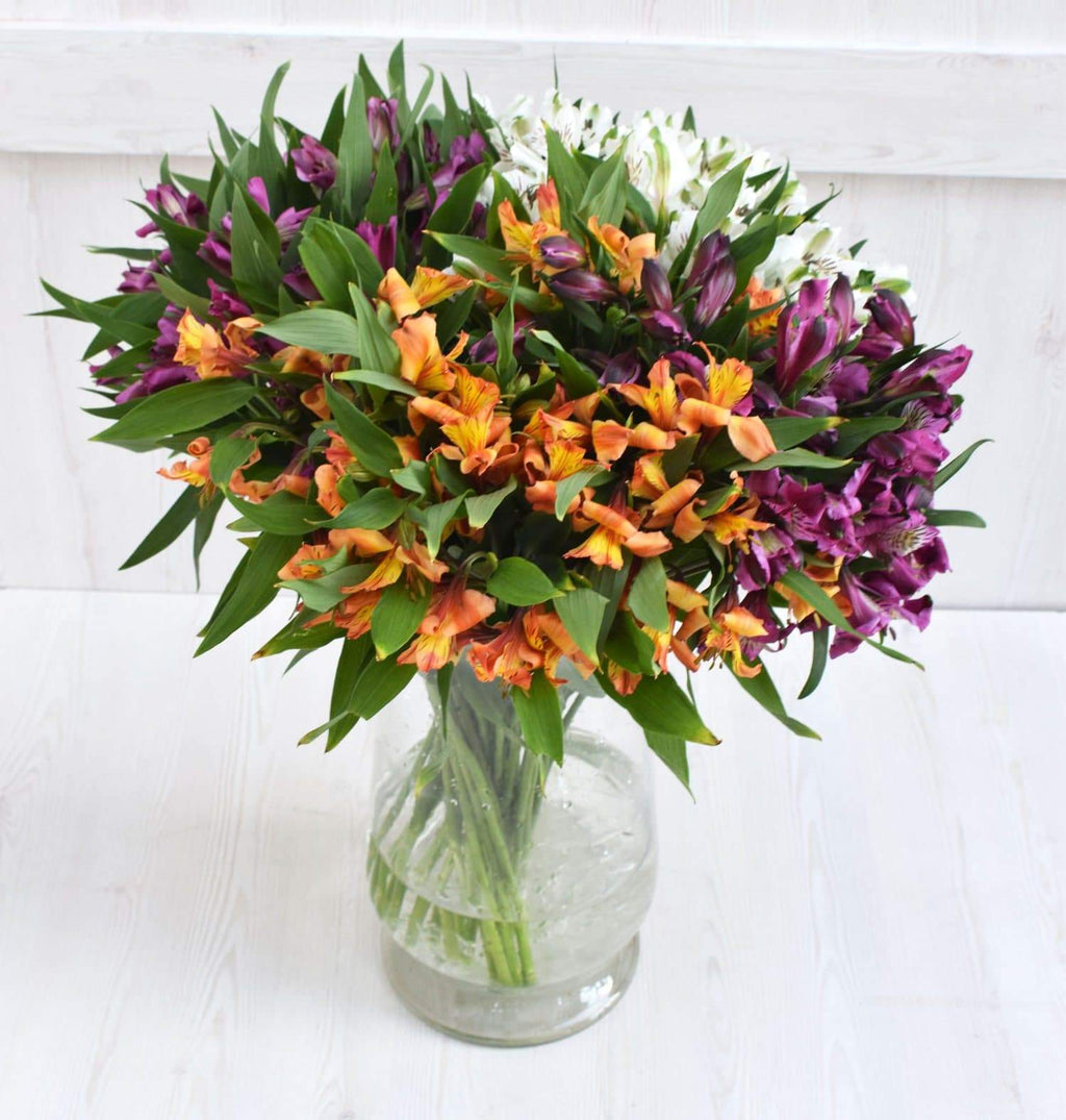Assorted Alstroemeria