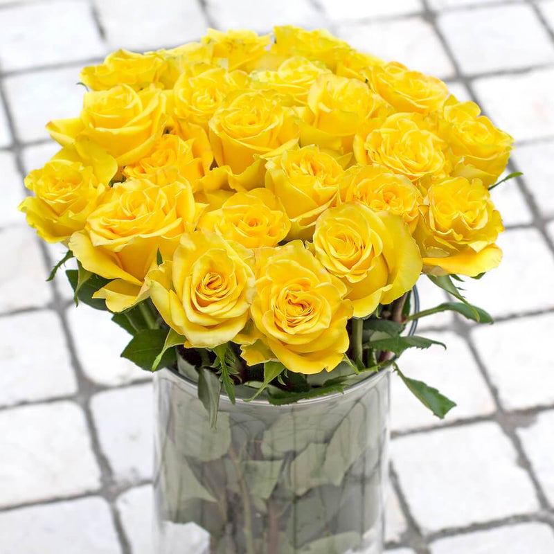 High & Yellow Magic Roses