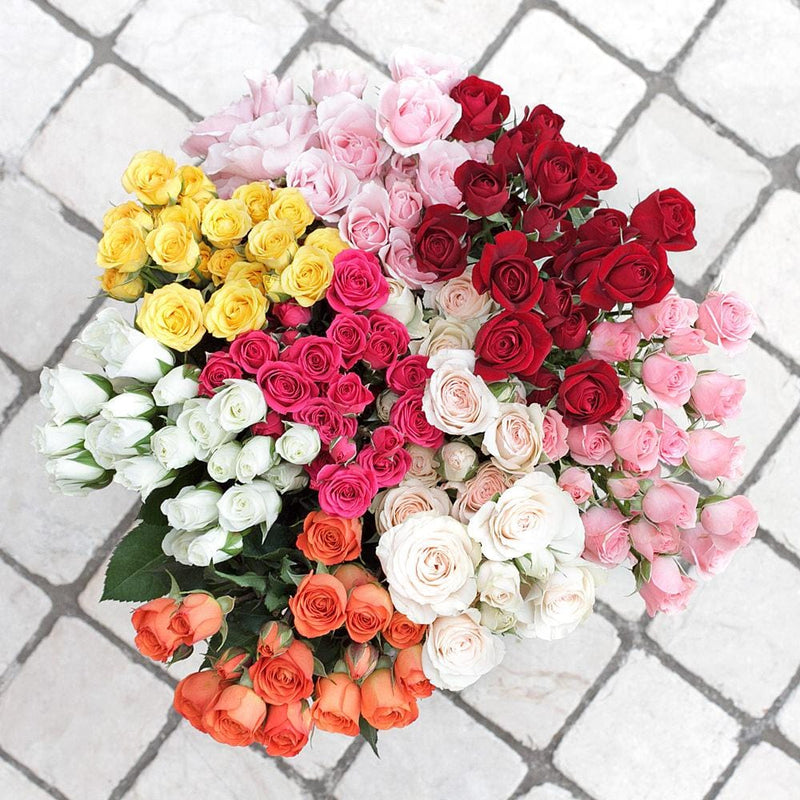 Assorted Spray Roses