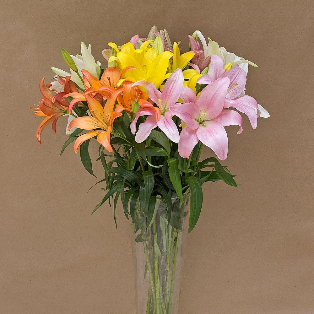 Lillies Mix Box