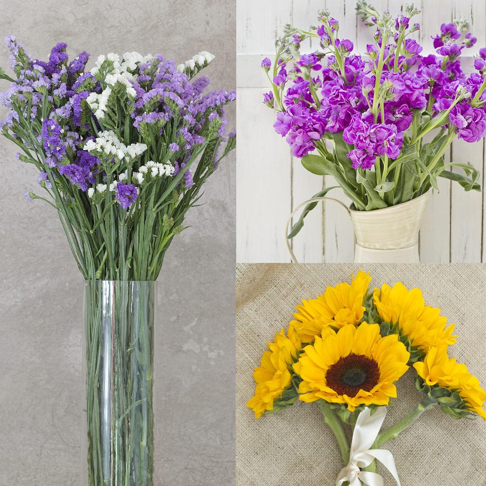 Stock, Statice and Sunflowers Mix Box