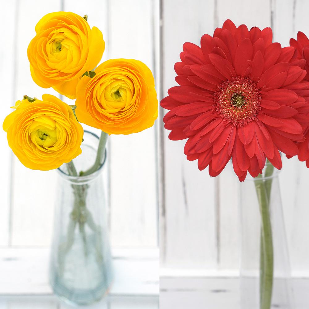 Ranunculus and Gerbera Mix Box
