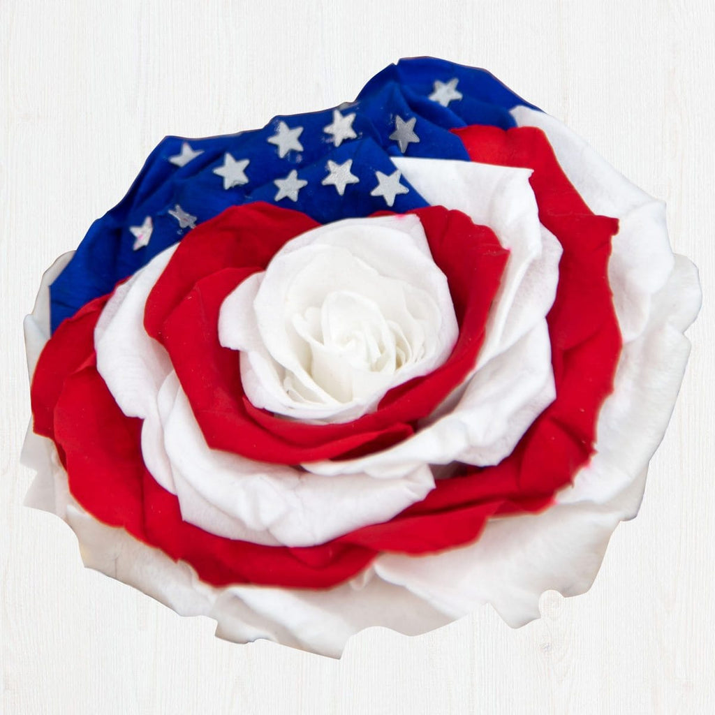 4th of July Preserved Rose