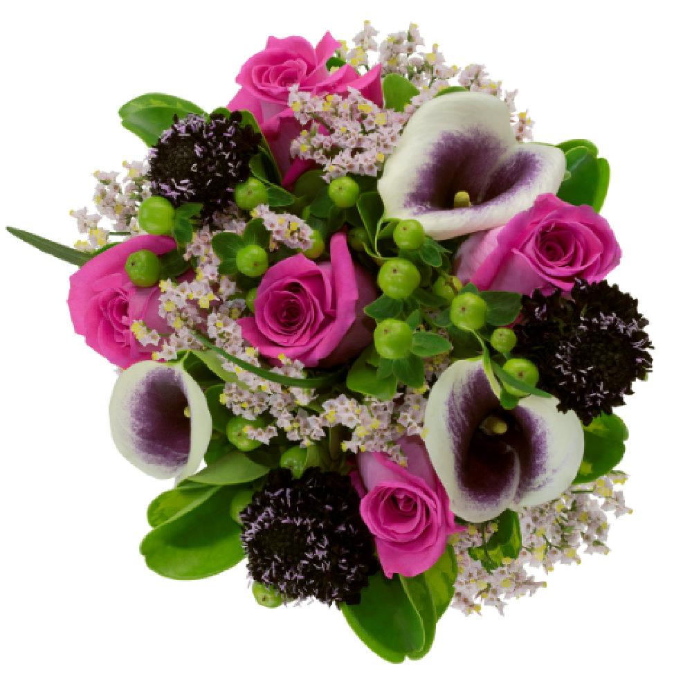 Scabiosa Love Arrangement