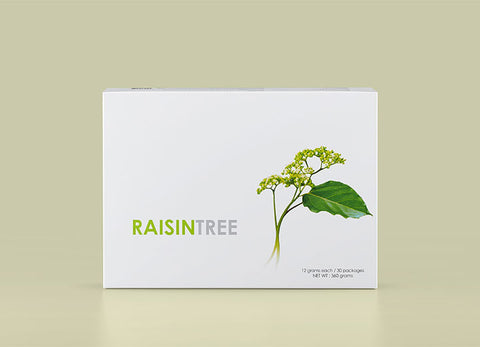 eLEAD - RAISINTREE, vegan/ plant/ organic nutrients to relieve effects of hangover - Our Comfy HQ