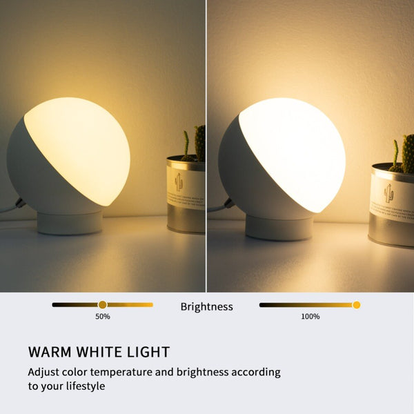 Wifi Led Google Home Alexa Smart Desk Lamp Outdoor Lighting Music Lamp - Our Comfy HQ