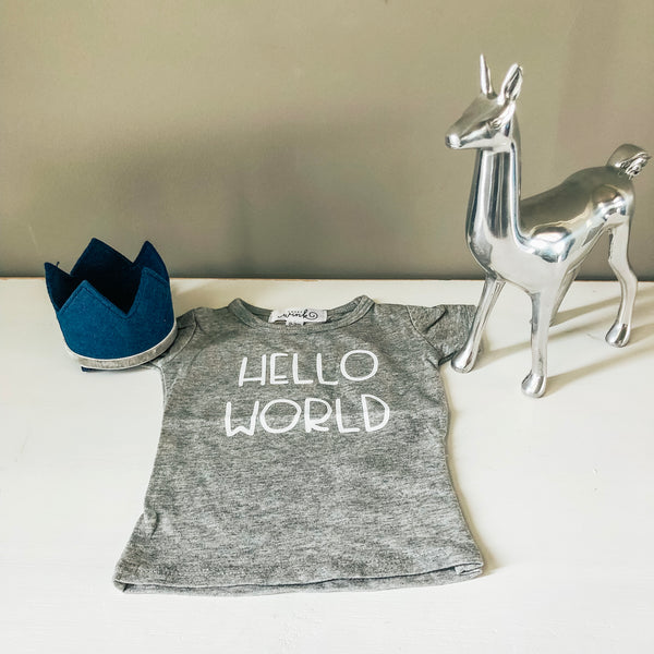 Hello World Tee - Gray