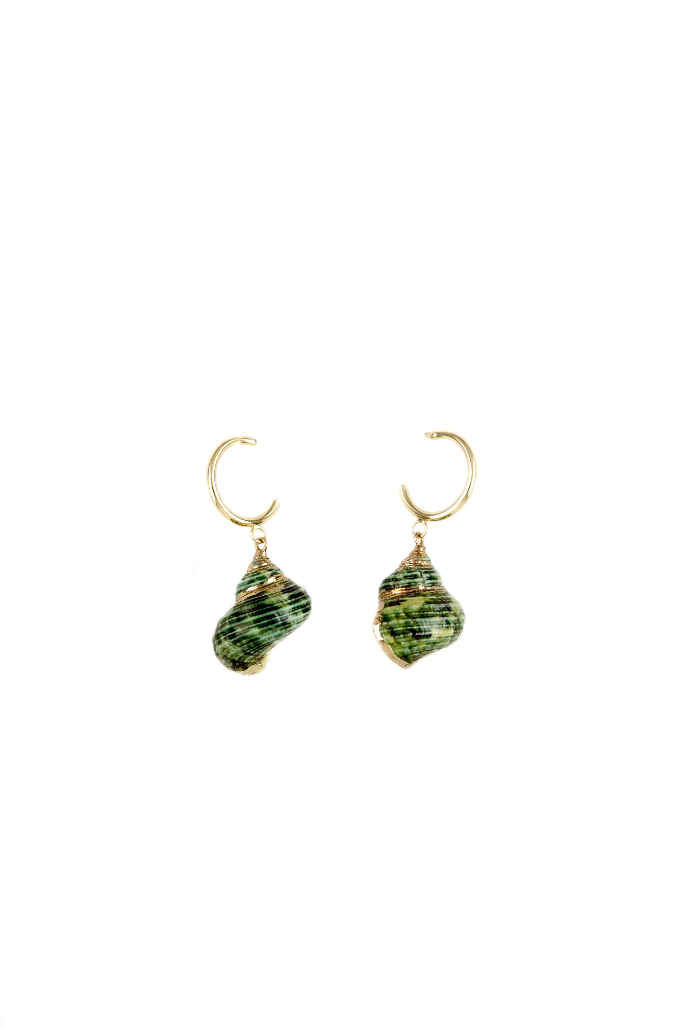 Green shells golden hoops
