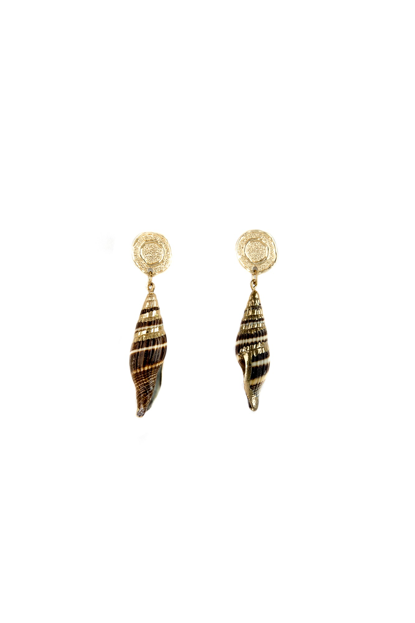 Brown shells earrings