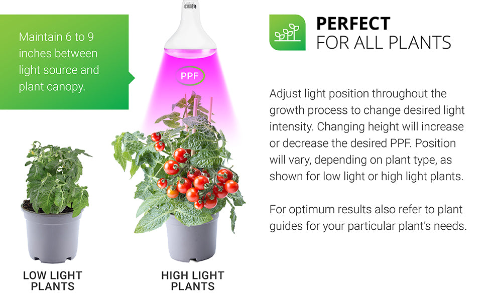"""Perfect for all plants. The Sunco BR30 Grow Light is great for indoor plant growth. Adjust light position throughout the growth process to change desired light intensity. Changing height will increase or decrease the desired PPF. Position will vary, depending on plant type, as shown for low light or high light plants (like the tomato plant shown). For optimum results also refer to plant guides for your particular plant's needs. Remember to maintain between 6-9"""" between light and plant canopy."""