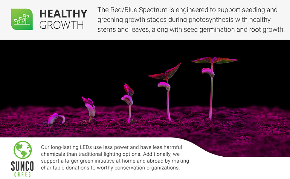 Healthy Growth. The Red/Blue Spectrum is engineered to support seeding and greening growth stages during photosynthesis with healthy stems and leaves, along with seed germination and root growth. Sunco Cares is our way to support a larger green initiative by making charitable donations to worthy conservation organizations. Our long-lasting LEDs use less power and have less harmful chemicals than traditional lighting options. Image shows a plant growing from seed to seedling under grow lights.