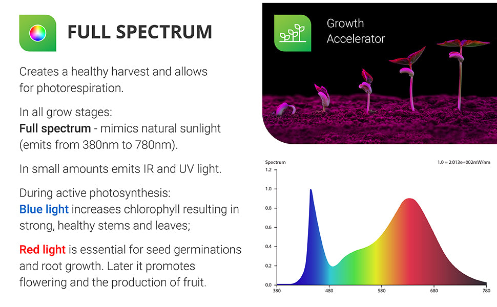 Full Spectrum. Using full spectrum grow lights creates a healthy harvest and allows for photorespiration. In all grow stages, full spectrum mimics natural sunlight (emits from 380nm to 780nm). In small amounts it emits IR and UV light. During active photosynthesis: Blue Light increases chlorophyll resulting in strong, healthy stems and leaves. Red light is essential for seed germinations and root growth. Later it promotes flowering and the production of fruit. Image shows seedlings growing and a Full Spectrum chart.