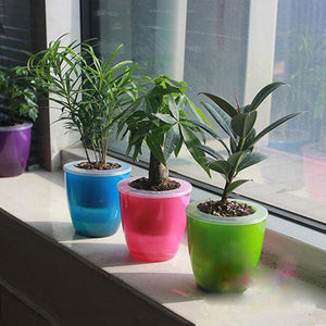 ThinkGreen - Self Watering Planters - FadMonkey
