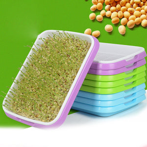 Sprouter Tray