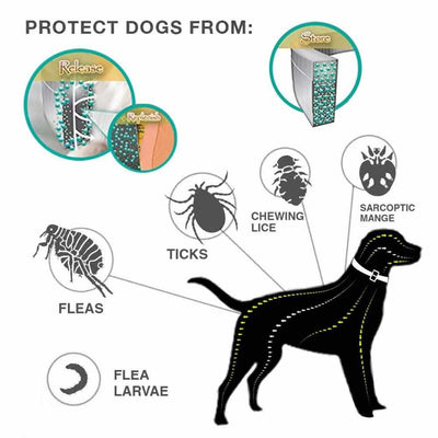 Anti Insect Flea Mosquitoes Ticks Collar For Dog-collar and harness-Golonzo