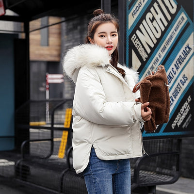 Full Slim Hair Cotton-padded Women Winter Jacket-Coats and Jackets-Golonzo