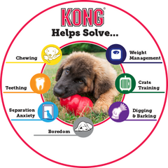 KONG Solutions