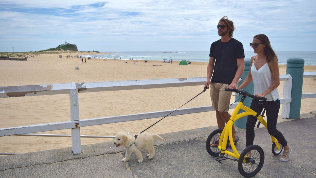 Alinker walking bike - showing couple on beachside walk with dog