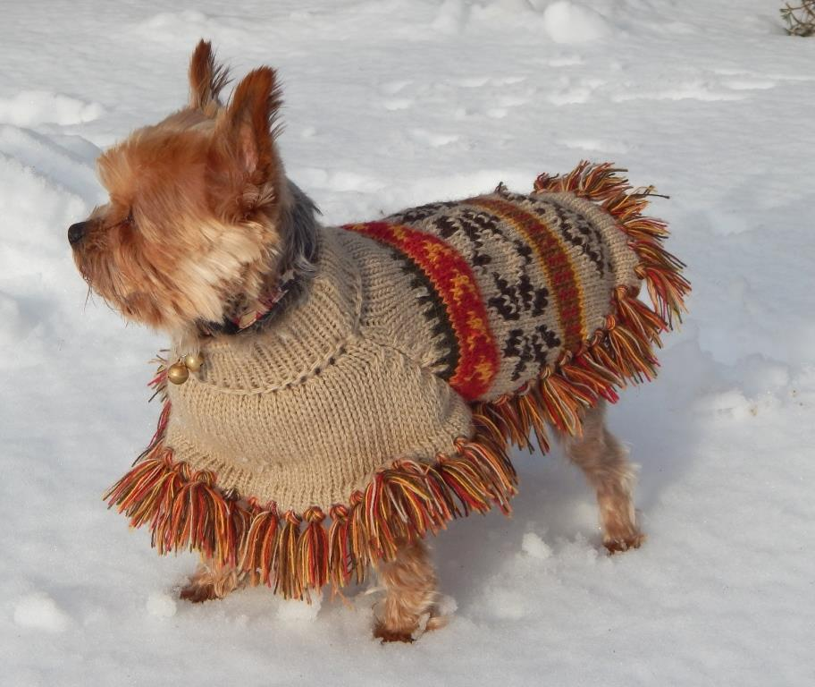 Ethnic Doggie Poncho with Fringe- Green