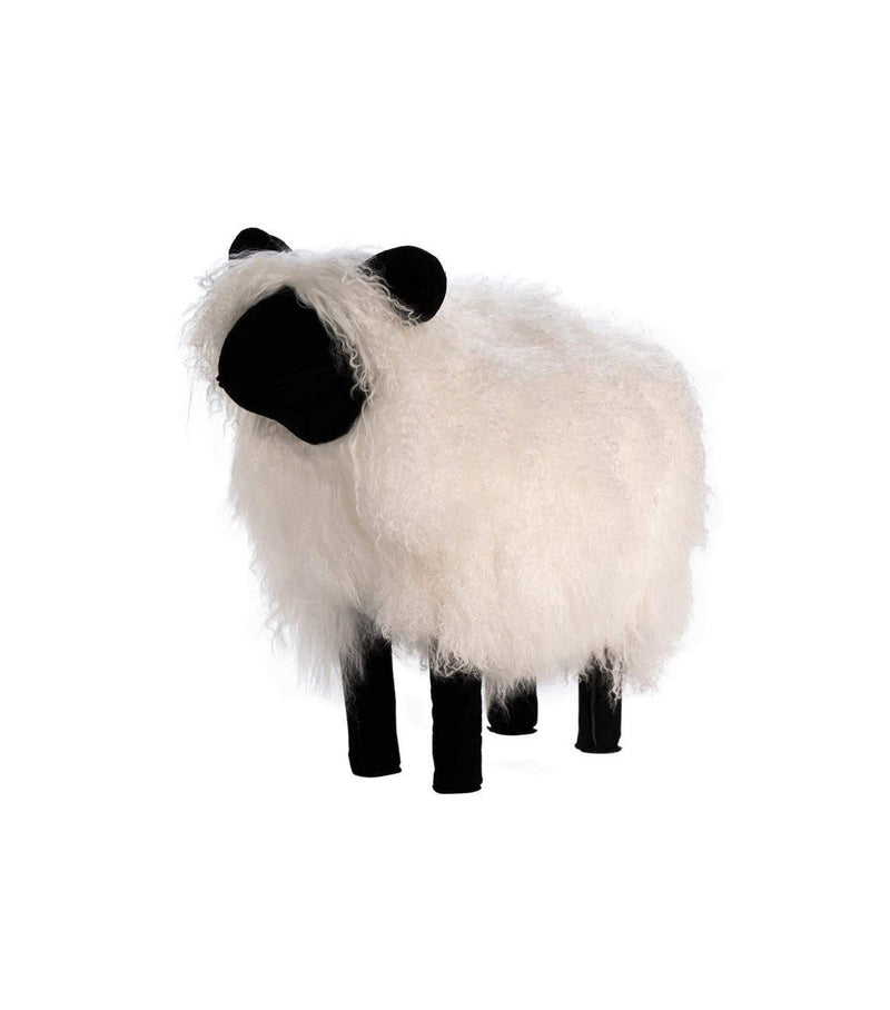 Lamb Fur Sheep