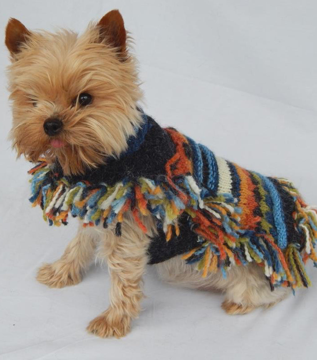 Ethnic Doggie Poncho with Fringe-Blue