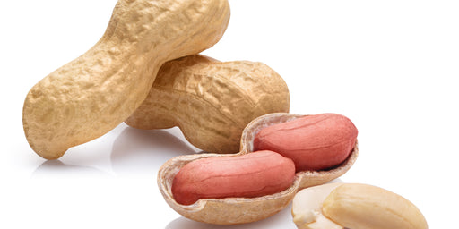 Palforzia Peanut Allergy Treatment Q&A