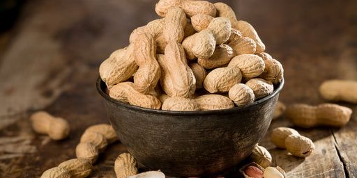 A Parent's Guide to Peanut Allergy