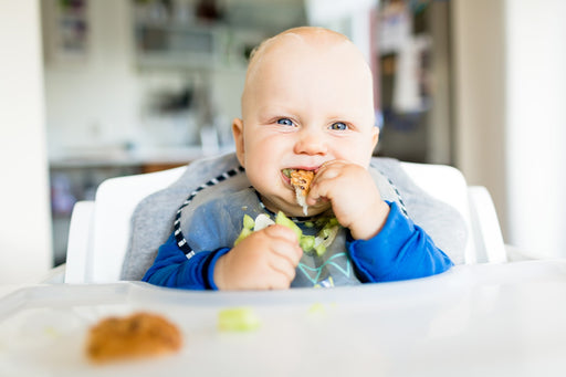 Baby Led Weaning: Q&A with Dietitian-Mom Whitney Crouch, RDN