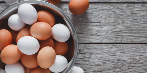 A Parent's Guide to Egg Allergy