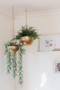 Gold Hanging Baskets (Set of 2)